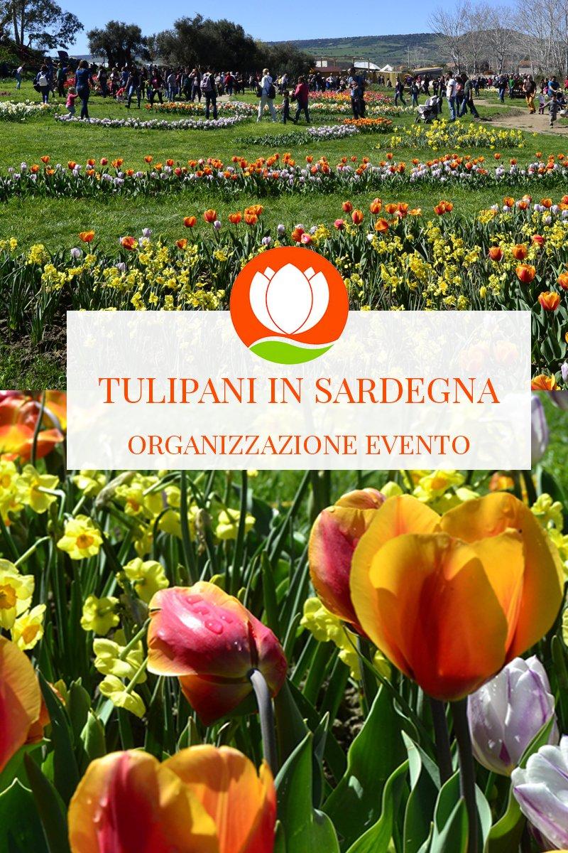 RossoDigitale e Tulipani in Sardegna, edizione 2021